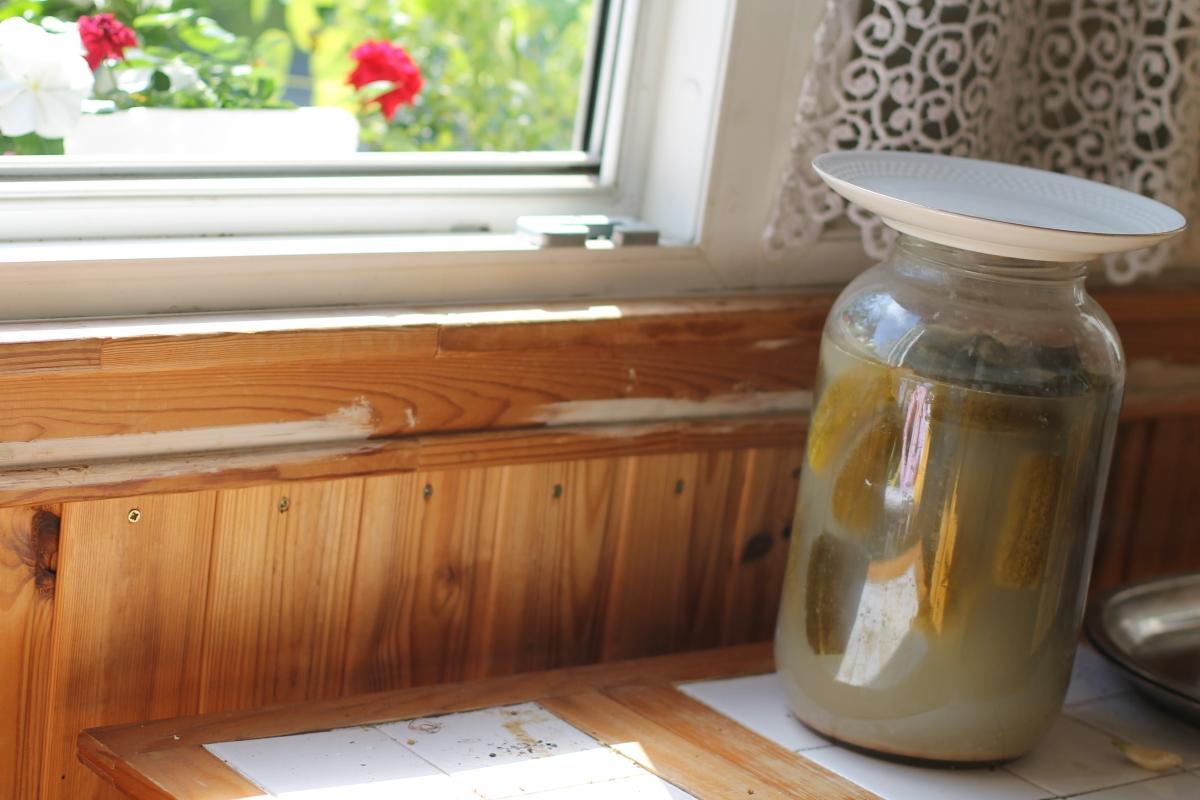 Lacto-fermented pickles (kovászosuborka)